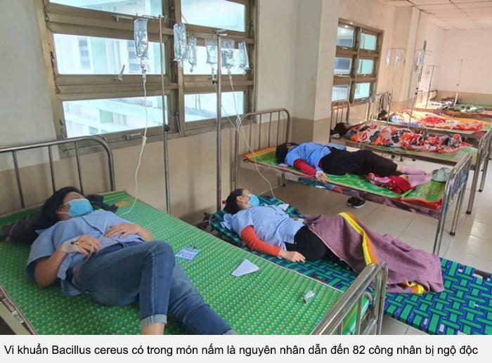 Nấm xào sả ớt bị nhiễm khuẩn Bacillus cereus, gần 100 công nhân nhập viện