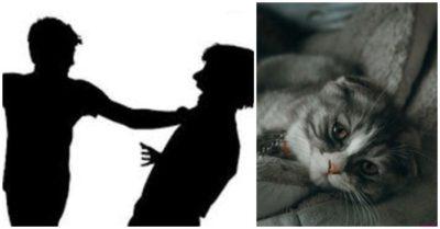 Thầy giáo đập lún sọ người đi đường vì mâu thuẫn với hàng xóm vụ mất con mèo